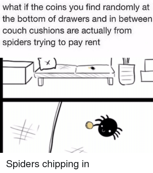 Couch, Spiders, and Rent: what if the coins you find randomly at  the bottom of drawers and in between  couch cushions are actually from  spiders trying to pay rent <p>Spiders chipping in</p>