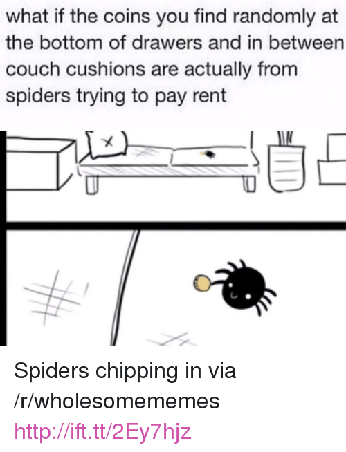 "Couch, Http, and Spiders: what if the coins you find randomly at  the bottom of drawers and in between  couch cushions are actually from  spiders trying to pay rent <p>Spiders chipping in via /r/wholesomememes <a href=""http://ift.tt/2Ey7hjz"">http://ift.tt/2Ey7hjz</a></p>"