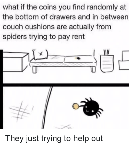 Couch, Help, and Spiders: what if the coins you find randomly at  the bottom of drawers and in between  couch cushions are actually from  spiders trying to pay rent They just trying to help out