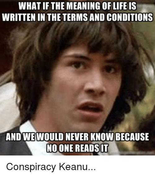 what if the meaning of life is written in the terms and conditions