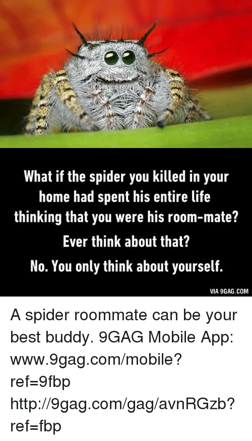 9gag, Dank, and Life: What if the spider you killed in your  home had spent his entire life  thinking that you were his room-mate?  Ever think about that?  No. You only think about yourself.  VIA 9GAG.COM A spider roommate can be your best buddy.  9GAG Mobile App: www.9gag.com/mobile?ref=9fbp  http://9gag.com/gag/avnRGzb?ref=fbp