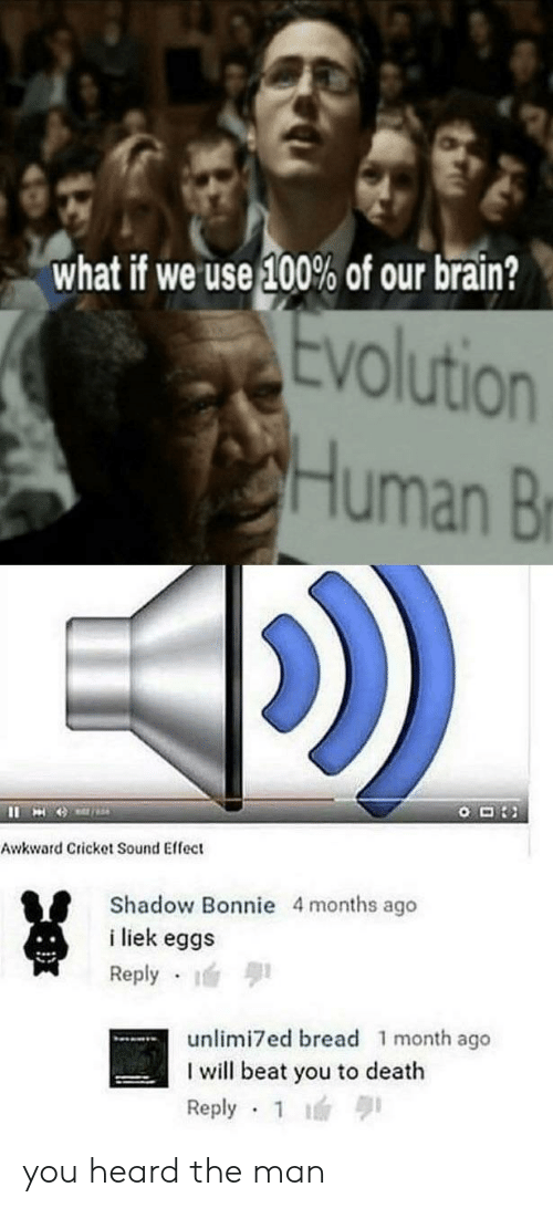 What if We Use 100% of Our Brain? Evolution Human B Awkward Cricket