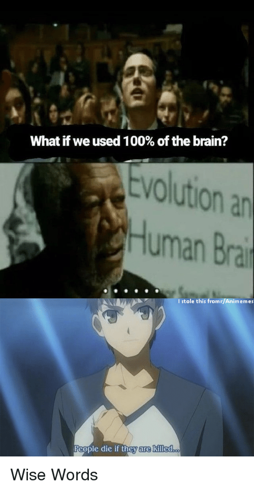 Anime, Brain, and Evolution: What if we used 1 00% of the brain?  Evolution an  Human Bra  I stole this fromr/Animemes  eople die if theyvare killed