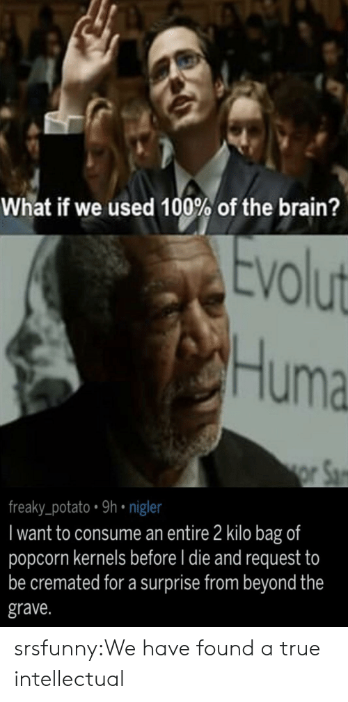 True, Tumblr, and Blog: What if we used 100% of the brain?  volut  Huma  reaky_potato 9h nigle  I want to consume an entire 2 kilo bag of  popcorn kernels before l die and request to  be cremated for a surprise from beyond the  grave. srsfunny:We have found a true intellectual