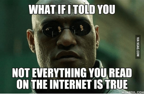 what ifi told you not everything youread on the internetistrue 14040733 what ifi told you not everything youread on the internetistrue