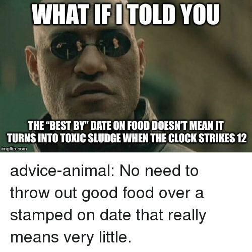 "Advice, Clock, and Food: WHAT IFITOLD YOU  THE ""BEST BY"" DATE ON FOOD DOESNT MEAN IT  TURNS INTO TOXIC SLUDGE WHEN THE CLOCK STRIKES 12  imgfip.com advice-animal:  No need to throw out good food over a stamped on date that really means very little."