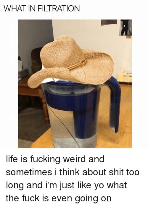 Fucking, Memes, and Shit: WHAT IN FILTRATION life is fucking weird and sometimes i think about shit too long and i'm just like yo what the fuck is even going on