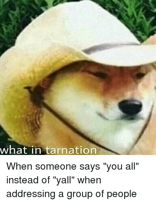 In Tarnation