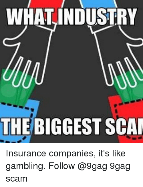 9gag, Memes, and 🤖: WHAT INDUSTRY  THE BIGGEST SCAM Insurance companies, it's like gambling. Follow @9gag 9gag scam