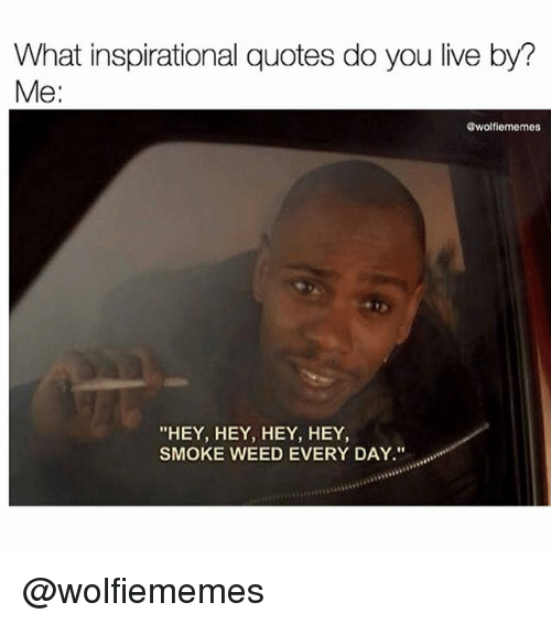 "Memes, Smoke Weed Every Day, and Weed: What inspirational quotes do you live by?  Me:  @wolfiememes  ""HEY, HEY, HEY, HEY  SMOKE WEED EVERY DAY."" @wolfiememes"