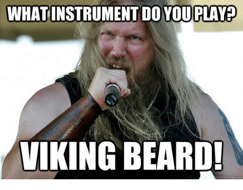 what instrument do you play viking beard uick meme com 5971399 what instrument do you play viking beard! uick meme com beard meme