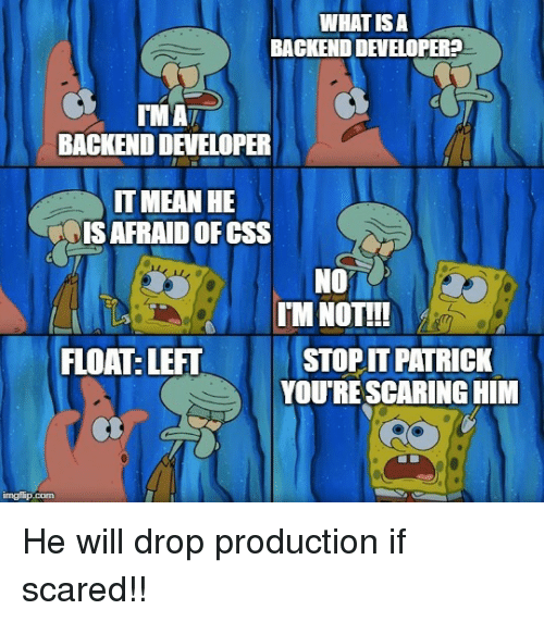 Mean, What Is, and What Is A: WHAT IS A  BACKEND DEVELOPER?  BACKEND DEVELOPER  IT MEAN HE  IS AFRAID OFCSS  NO  LII  FLOAT: LEFT  IM NOTT!  STOP IT PATRICK  YOU'RE SCARING HIM He will drop production if scared!!