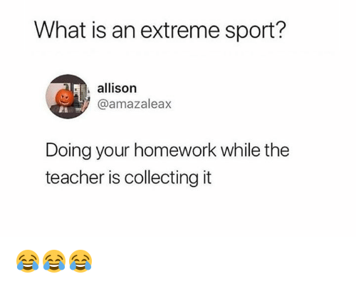 what is a homework
