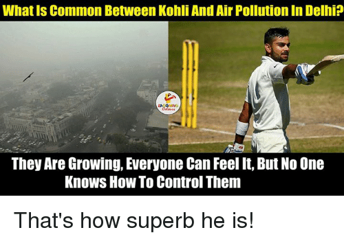 Common, Superb, and Indianpeoplefacebook: What Is Common Between Kohli And Air Pollution In Delhi  They Are Growing, Everyone Can Feel It, But No One  Knows How To Control Them That's how superb he is!