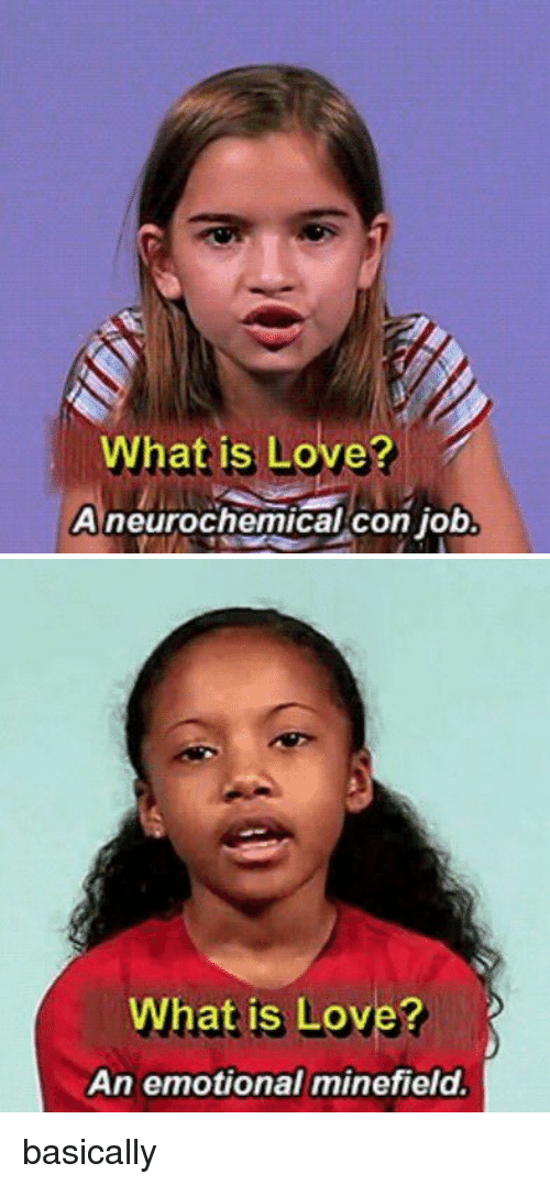 What Is Love, Girl Memes, and Basicness: What is Love?  A neurochemical Con Job   What is Love?  An emotional minefield. basically