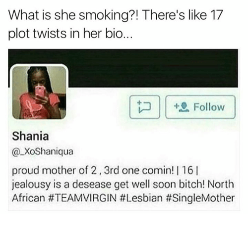 Bitch, Memes, and Smoking: What is she smoking?! There's like 17  plot twists in her bio..  | |坦Follow  Shania  @XoShaniqua  proud mother of 2, 3rd one comin! | 16l  jealousy is a desease get well soon bitch! North  African