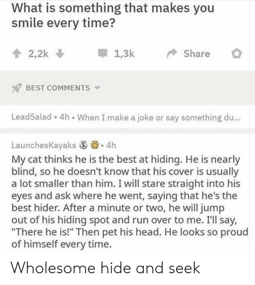 """Head, Run, and Best: What is something that makes you  smile every time?  會2,2k  *  1.3k-> Share  BEST COMMENTS  Lead5alad 4h When I make a joke or say something du...  LaunchesKayaks ⑤  . 4h  My cat thinks he is the best at hiding. He is nearly  blind, so he doesn't know that his cover is usually  a lot smaller than him. I will stare straight into his  eyes and ask where he went, saying that he's the  best hider. After a minute or two, he will jump  out of his hiding spot and run over to me. I'll say,  """"There he is!"""" Then pet his head. He looks so proud  of himself every time. Wholesome hide and seek"""