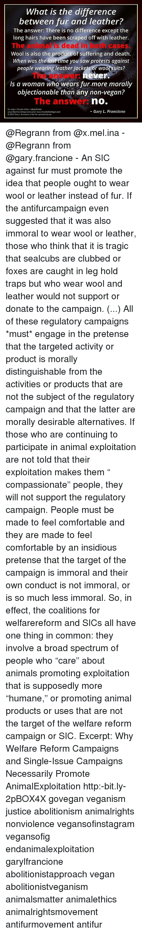 "My Thoughts on Single-Issue Animal ""Rights"" Campaigns"