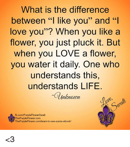 What Is The Difference Between L Like You And L Love You When You