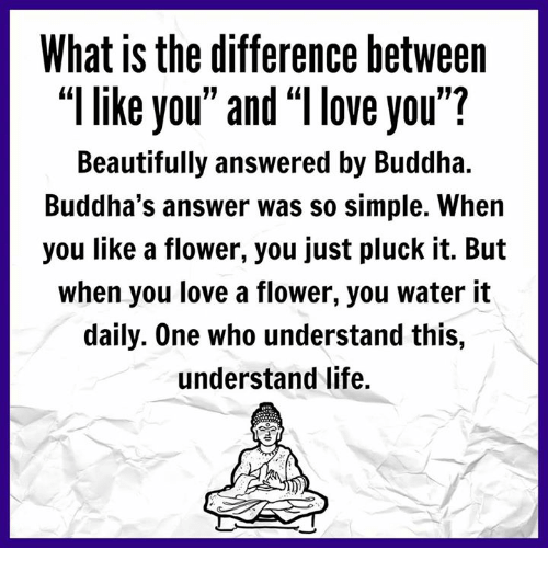 """Memes, Buddha, and 🤖: What is the difference between  like you"""" and """"llove you""""?  Beautifully answered by Buddha.  Buddha's answer was so simple. When  you like a flower, you just pluck it. But  when you love a flower, you water it  daily. One who understand this,  understand life."""