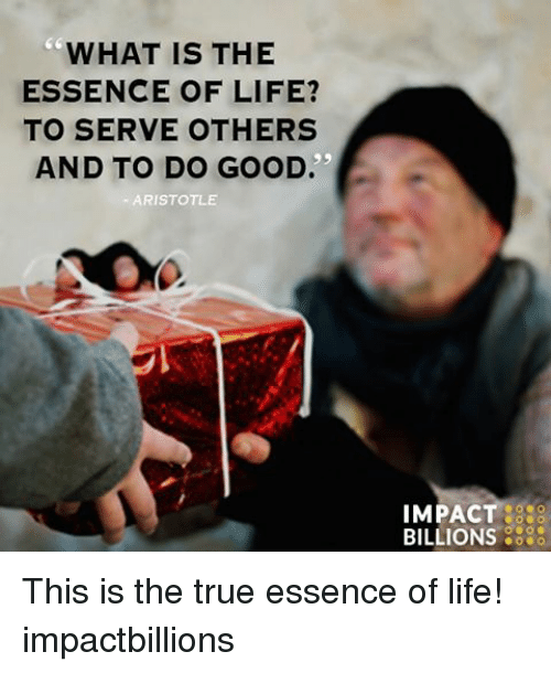 what is the essence of life