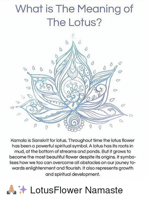 What Is The Meaning Of The Lotus Kamala Is Sanskrit For Lotus