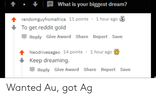 Reddit, What Is, and Got: What is your biggest dream?  randomguyfromafrica 11 points 1 hour ago S  To get reddit gold  Џ Reply Give Award Share Report Save  Neodrivesageo 14 points  Keep dreaming.  1 hour ago  Reply Give Award Share Report Save Wanted Au, got Ag