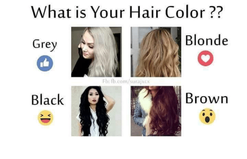 What Is Your Hair Color Blonde Grey Fb Fbcomsu Brown Black