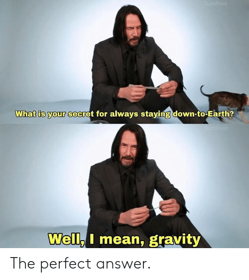 Dank, Earth, and Gravity: What is your secret for always staving down-to-Earth?  Well.I mean, gravity The perfect answer.