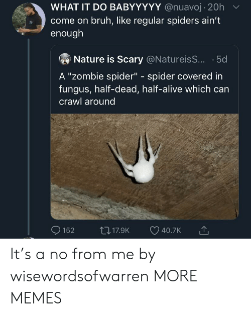 "Alive, Bruh, and Dank: WHAT IT DO BABYYYYY @nuavoj 20h  come on bruh, like regular spiders ain't  enough  Nature is Scary @NatureisS... 5d  A ""Zombie spider"" spider covered in  fungus, half-dead, half-alive which can  C  crawl around  117.9K  152  40.7K It's a no from me by wisewordsofwarren MORE MEMES"