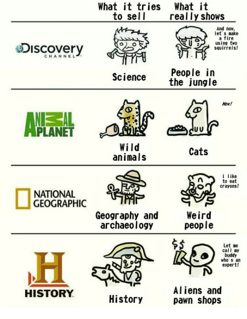 Animals, Cats, and Fire: What it tries Whatit  to sell  really shows  And now  let s make  a fire  using two  squirrels!  Discovery  CHANNEL  People in  the jungle  Science  Hew!  PLANET  Wild  animals  Cats  like  to eat  crayons!  NATIONAL  GEOGRAPHIC  Geography and  archaeology  Weird  people  $5  Let me  call my  buddy  who s an  expert!  Aliens and  pawn shops  HISTORY  History