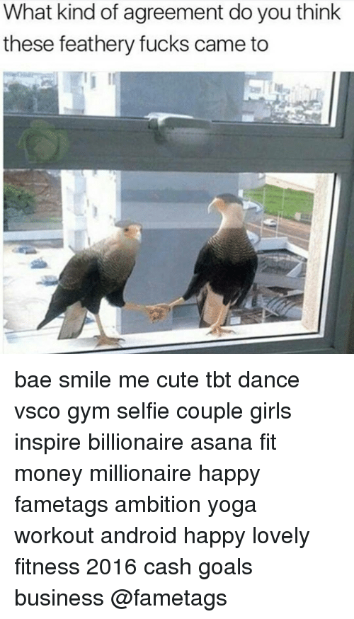 What Kind Of Agreement Do You Think These Feathery Fucks Came To Bae