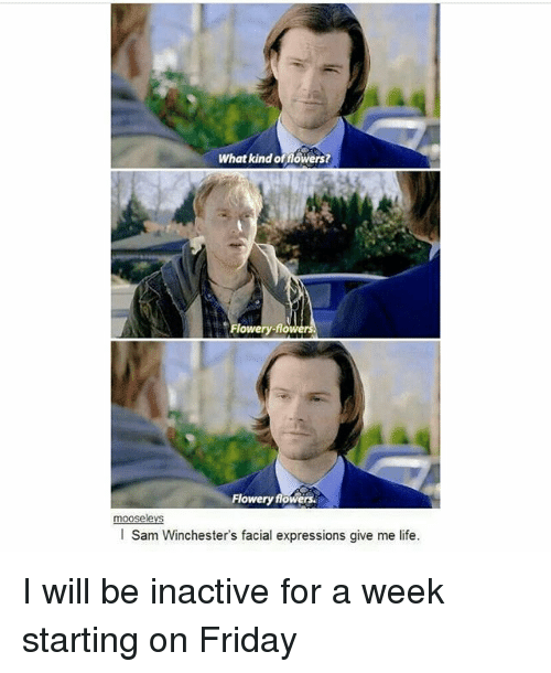 Friday, Life, and Memes: What kind of flowers?  lowery-flowe  Flowery flowers  mooselevs  l Sam Winchester's facial expressions give me life I will be inactive for a week starting on Friday