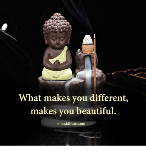 Beautiful, Memes, and Buddhism: What makes you different,  makes you beautiful  e-buddhism com