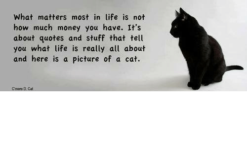What Matters Most In Life Is Not How Much Money You Have Its About