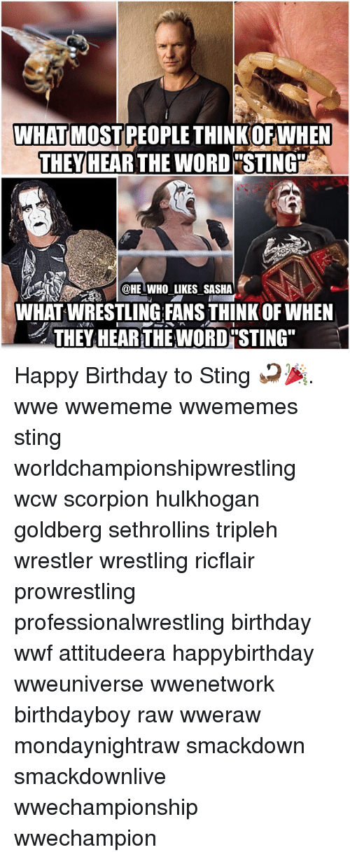 what most people thinkofwhen they hear the word sting he 17165535 what most people thinkofwhen they hear the word sting who likes