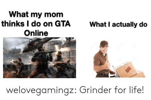 Life, Tumblr, and Blog: What my mom  thinks I do on GTA  Online  What I actually do  T welovegamingz:  Grinder for life!
