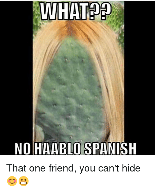Memes, Spanish, and 🤖: WHAT??  NO HAABLO SPANISH That one friend, you can't hide 😊😬