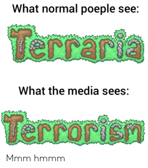 What Normal Poeple See Terraria What the Media Sees