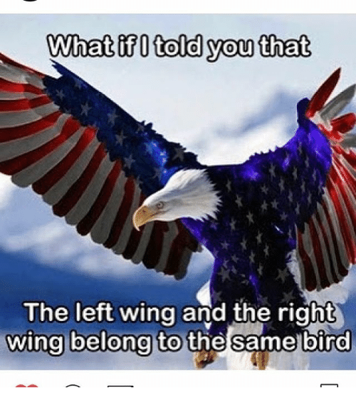 """Image result for image of """"right"""" and """"left,"""" are simply two """"wings"""" of the same bird."""