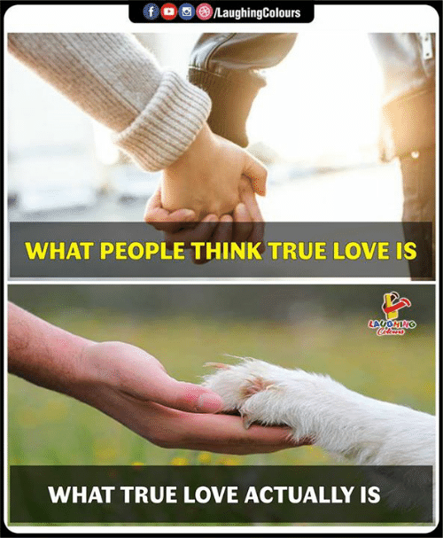 Love, True, and Love Actually: WHAT PEOPLE THINK TRUE LOVE IS  WHAT TRUE LOVE ACTUALLY IS