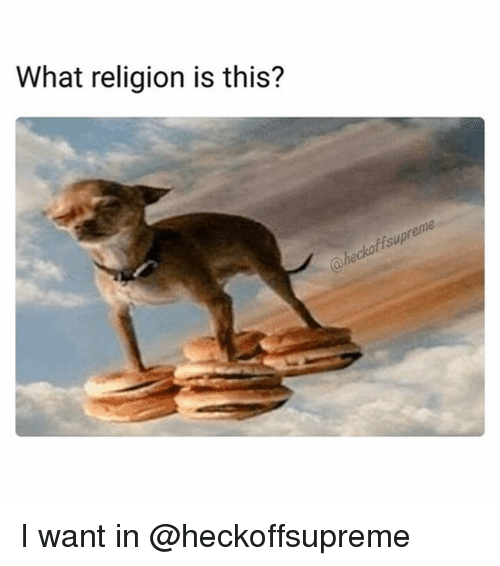 Funny, Girl Memes, and Religion: What religion is this?  ffsup  hecko I want in @heckoffsupreme