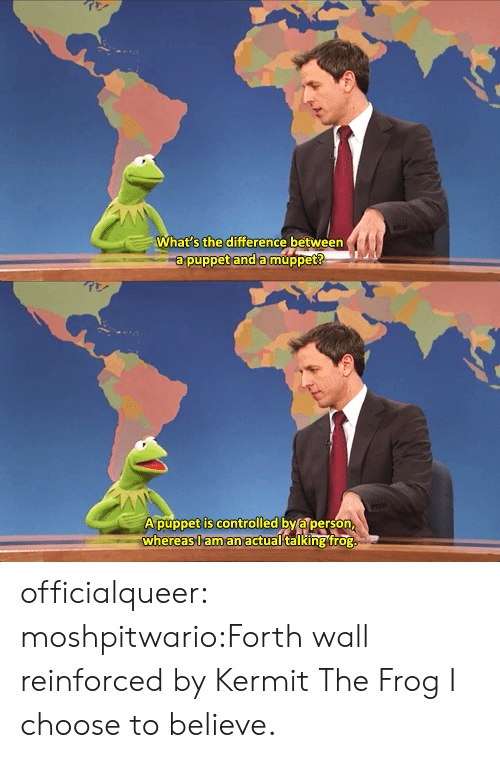 Kermit the Frog, Tumblr, and Blog: What s the difference between  a puppet and amuppet   A púppet is controlled by a person  whereas,l aman actual talking frog officialqueer:  moshpitwario:Forth wall reinforced by Kermit The Frog  I choose to believe.