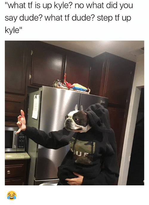 "Dude, Memes, and 🤖: ""what tf is up kyle? no what did you  say dude? what tf dude? step tf up  kyle  UF 😂"