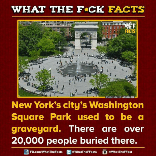 Dank, 🤖, and Buried: WHAT THE FCK FACTS  Image source Wikipedia  New York's city's Washington  Square Park used to be a  graveyard.  There are over  20,000 people buried there.  FB.com/WhatThe Facts  @WhatTheFFacts  @WhatTheFFact
