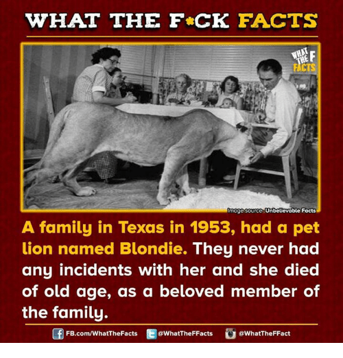 What The Fck Facts Mage Source Unbelievable Facts A Family In Texas