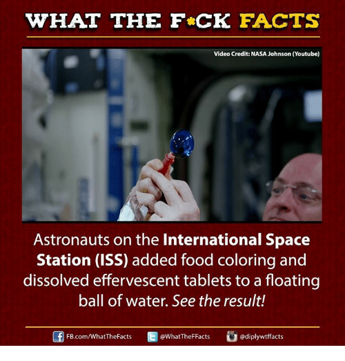 WHAT THE FCK FACTS Video Credit NASA Johnson Youtube Astronauts on ...