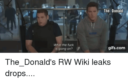 Fuck, Gifs, and Wiki: What the fuck is going on? The Donald
