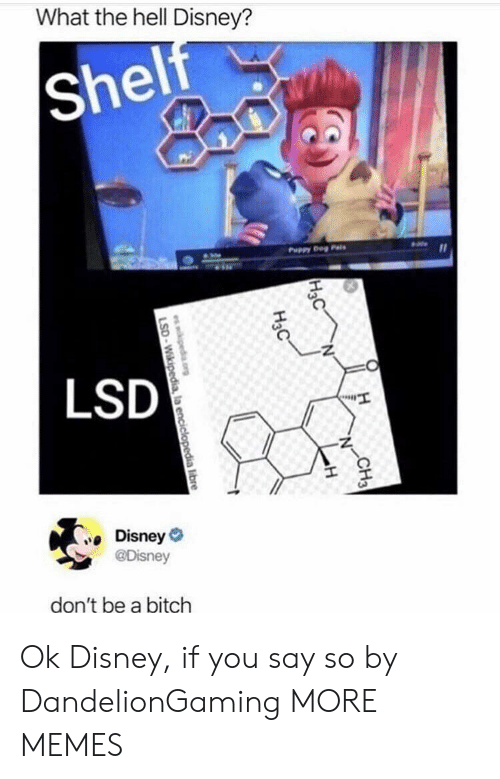Bitch, Dank, and Disney: What the hell Disney?  shel  Puppy Deg Pais  LSD  Disney  @Disney  don't be a bitch Ok Disney, if you say so by DandelionGaming MORE MEMES
