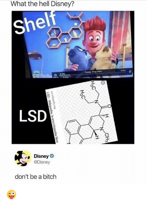 Bitch, Disney, and Memes: What the hell Disney?  shel  PuPPY DePi  LSD  Disney  @Disney  don't be a bitch 😜